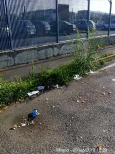 Linate_29-07-2012_5